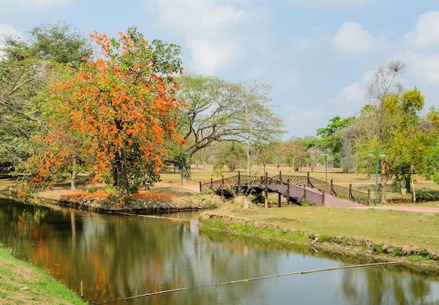 春の美しい公園