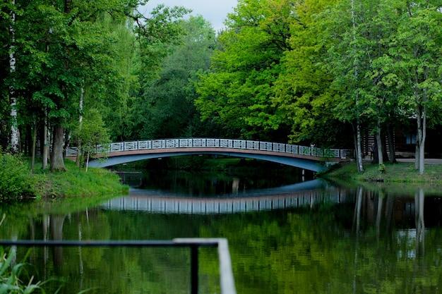 湖と湖の水の反射に架かる橋のある美しい公園