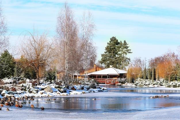 冬の日に湖のある美しい公園