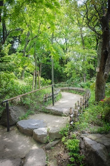 Beautiful path in a japanese style garden. osaka.