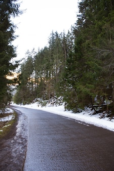 Beautiful path to the sea eye in poland. the road to the forest. high tatras.