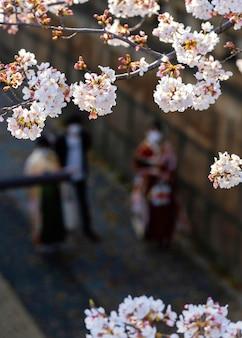 도쿄의 아름다운 복숭아 나무 꽃