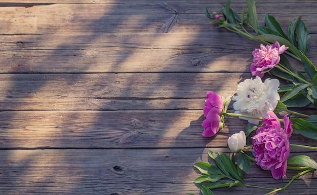 Beautiful peonies on old dark wooden background in sunlight
