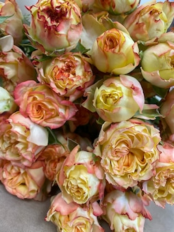 Красивые кустовые пионовидные розы в желтых и оранжевых тонах, букет роз в цветочном магазине