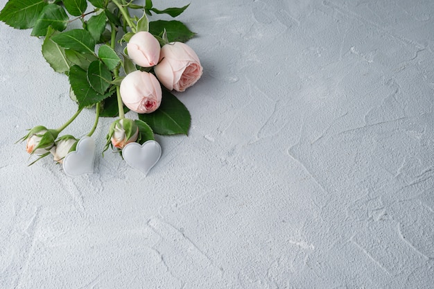 Beautiful peony bushy pink roses and two white hearts. valentine's day, the concept of love and loyalty. copy space.