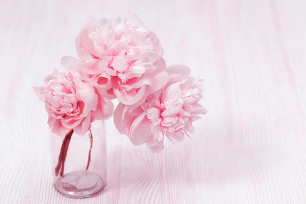 Beautiful peony flower in vase on blurred background