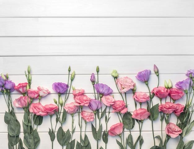Красивые розовые фиолетовые фиолетовые цветы эустомы на белом деревянном фоне. копировать пространство, вид сверху,