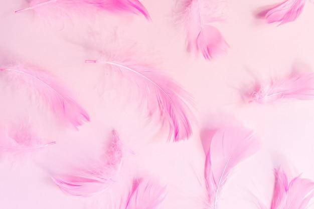 ピンクのパステル調の背景に美しいピンクの鳥の羽。コピースペースとフラットが横たわっていた。