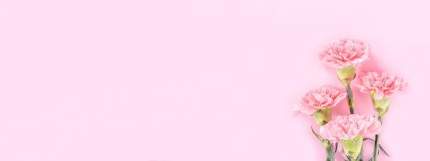 어머니의 날 꽃 개념에 대 한 파스텔 핑크 테이블 배경에 아름 다운 핑크 카네이션.