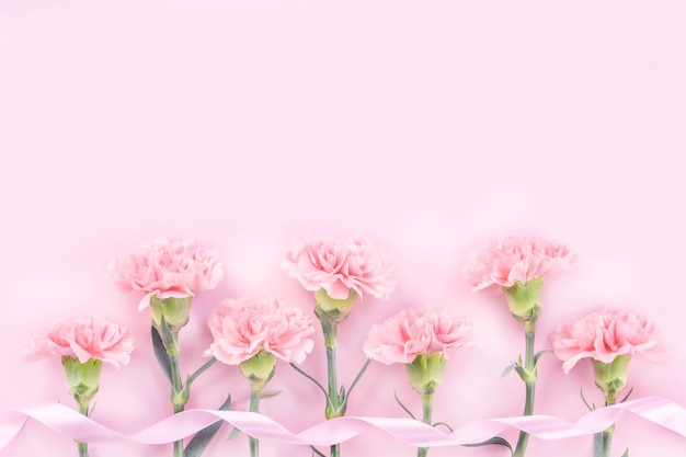 Beautiful pink carnation on pastel pink table background for mother's day flower concept.