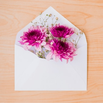 Beautiful pink flowers inside the white envelope on wooden backdrop