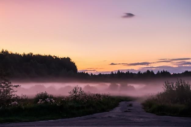 日没時の美しいピンクの霧。森の中の自然にたそがれ。