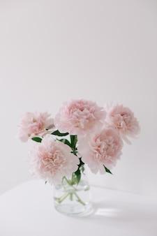 Красивые розовые пионы в стеклянной вазе на белом фоне