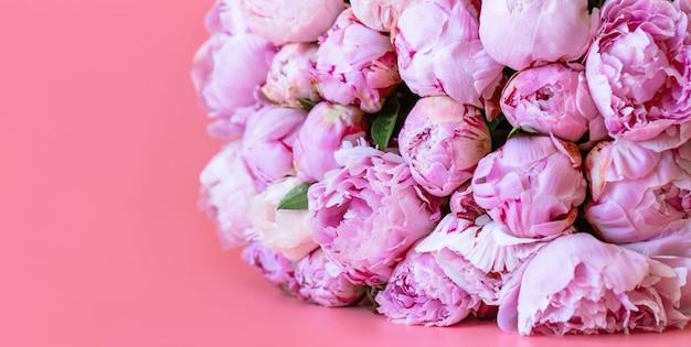 ピンクの表面に美しいピンクの牡丹。春の花のコンセプトです。