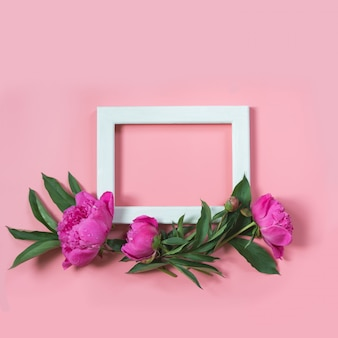 Beautiful pink peony flower and white frame for text on punchy pastel pink. copy space. top view. flat lay.