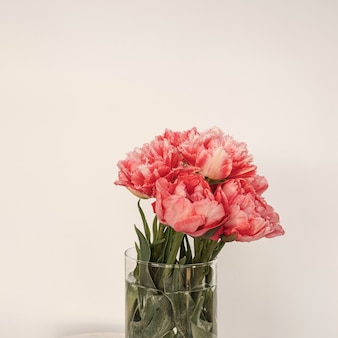 Beautiful pink peony flowers bouquet in glass vase on marble table on white