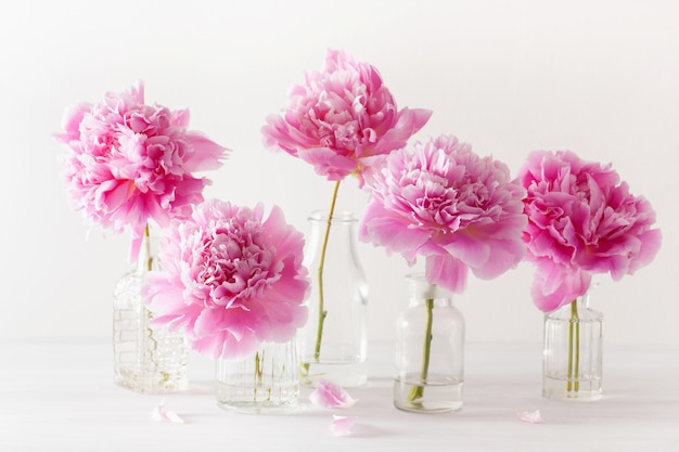 Beautiful pink peony flowers bouquet in vase