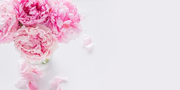 Beautiful pink peony flowers. spring bckground