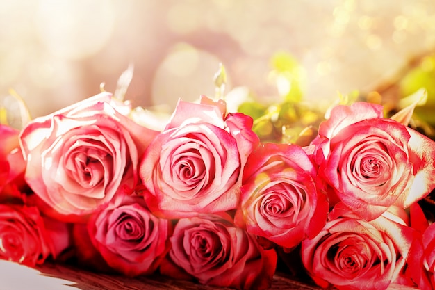 Beautiful pink roses flowers bouquet background