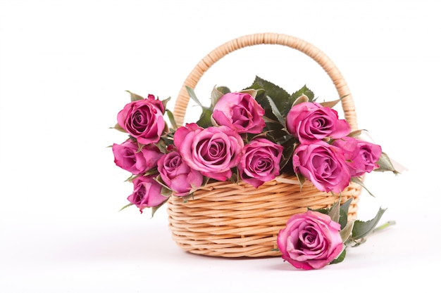 Beautiful pink roses in a wicker basket on white