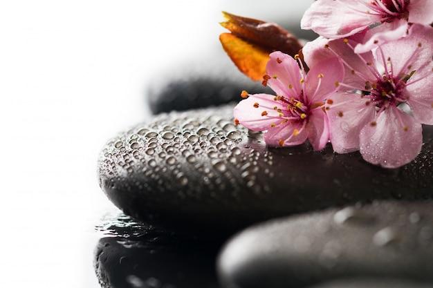 美しいピンクのスパの花スパのホットストーン水のぬれた背景。側面構成。スペースをコピーします。スパコンセプト。暗い背景。