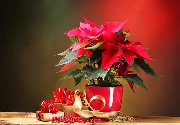 Красивая пуансеттия в цветочном горшке на деревянном столе на ярком фоне