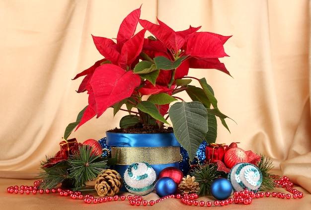 金の生地の背景にクリスマスボールと美しいポインセチア