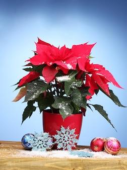 木製のテーブルにクリスマスボールと美しいポインセチア