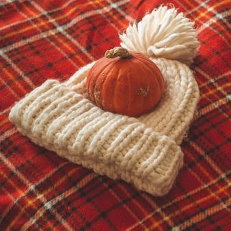 Красивая тыква, шляпа, в клетку красного цвета. поздравления с временами года. уютная осень.