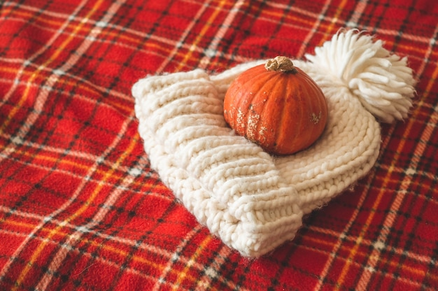 Beautiful pumpkin, hat, on plaid red. seasons greetings. cozy autumn.