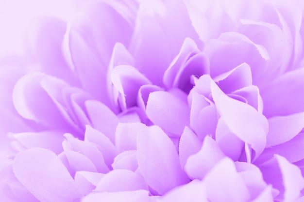Красивый фиолетовый цветок с цветными фильтрами, мягкий цвет и стиль размытия для фона