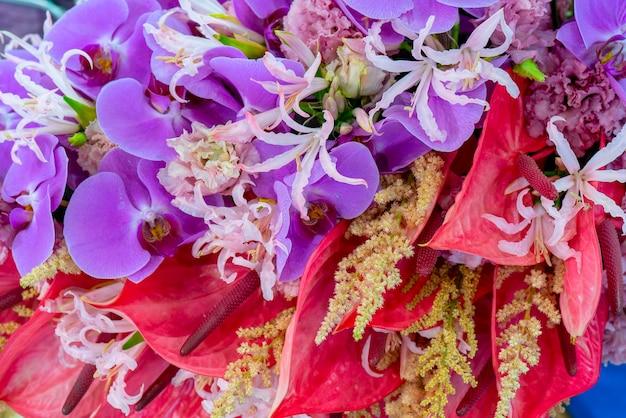 아름 다운 보라색 난초 꽃입니다. 자연 야생 동물입니다.