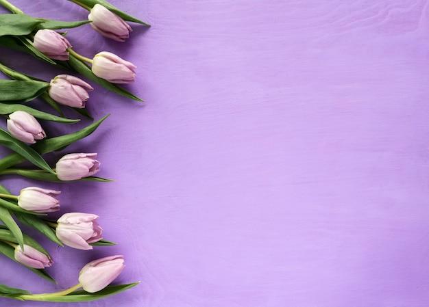 Красивые фиолетовые тюльпаны на фиолетовом