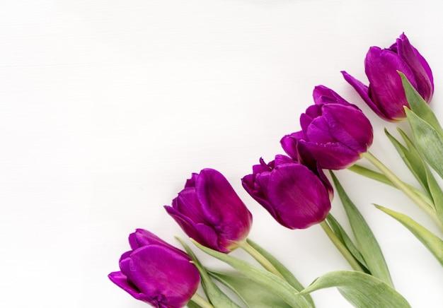 Красивые фиолетовые тюльпаны на белом столе