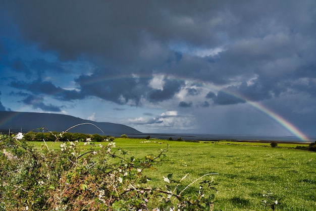Beautiful rainbow over a flat pasture field