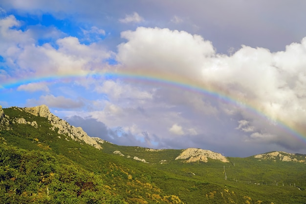 Beautiful rainbow over the forest in the mountains