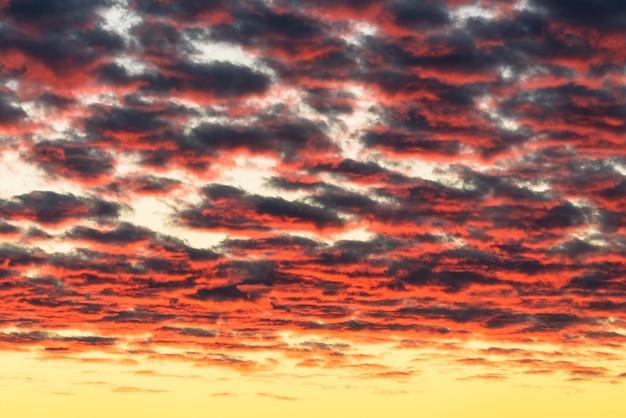 Красивые красные облака, освещенные лучами солнца на закате, плывут по желто-золотому небу.