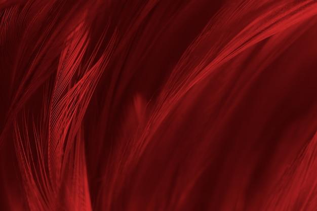 美しい赤い羽毛パターンテクスチャ