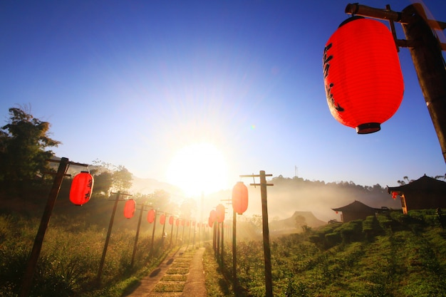 Beautiful red paper chiwalkwaynese lanterns decoration on walkway in the mist and sunrise at lee wine ruk thai resort located on the mountain, thailand