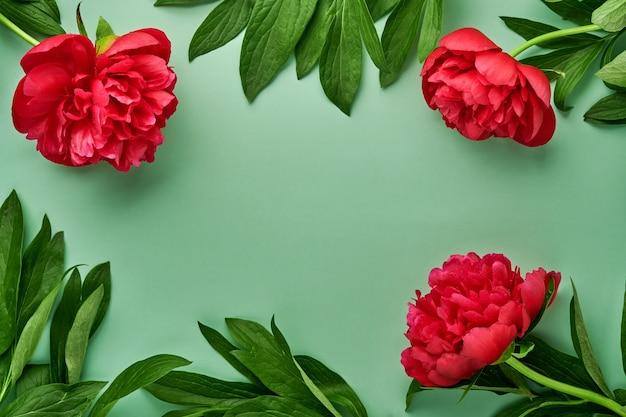 녹색 배경, 평면도, 복사 공간, 평면 배치 위에 아름 다운 붉은 모란 꽃 꽃다발. 발렌타인 데이, 어머니의 날 배경.