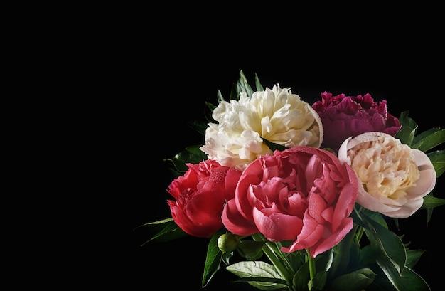 검은 배경, 위쪽 전망, 복사 공간, 평평한 평지에 격리된 아름다운 빨간색, 분홍색, 흰색 모란 꽃다발. 발렌타인, 결혼식 및 어머니 날 배경입니다.