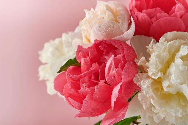 아름다운 빨강, 분홍, 흰색 모란 꽃은 분홍색 배경, 위쪽 전망, 복사 공간, 평평하게 놓여 있습니다. 발렌타인, 결혼식 및 어머니 날 배경입니다.
