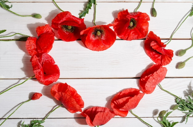 Beautiful red poppies in the shape of a heart