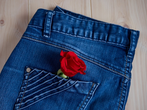 Beautiful red rose in jeans pocket