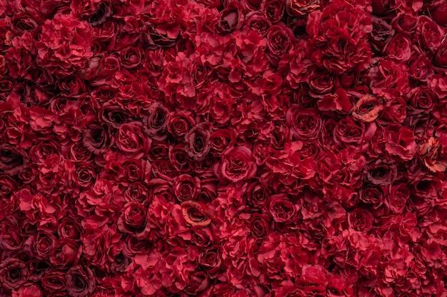 美しい赤いバラ。花の壁。巨大な赤いバラのクローズアップ。バレンタインデーのプレゼント。愛と情熱。花柄のデザイン。