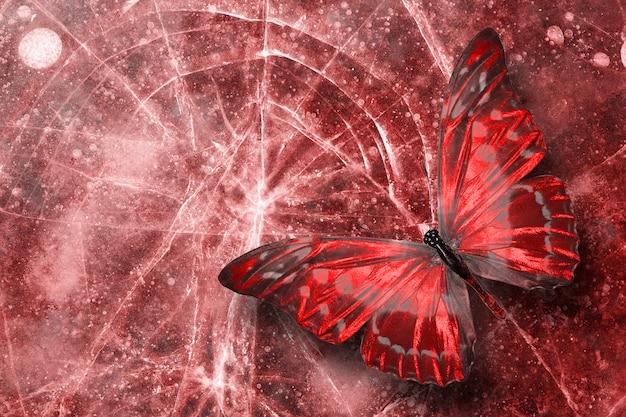 아름다운 붉은 열대 나비