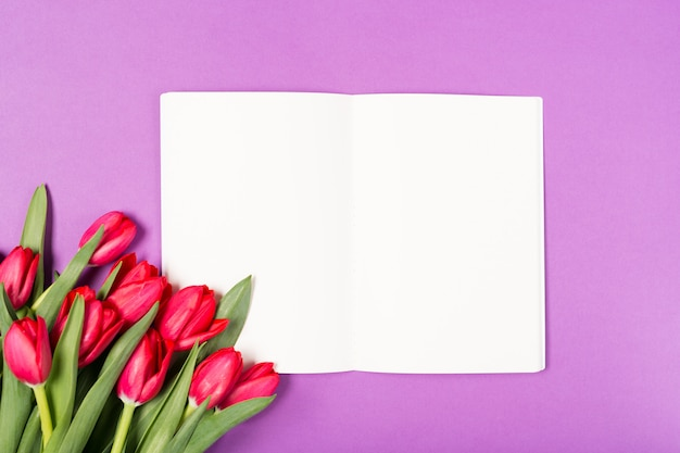 Beautiful red tulips and opened notebook with blank paper on purple background. happy mothers day. space for text. greeting card. holidays concept. copy space, top view. birthday. copy space. top view