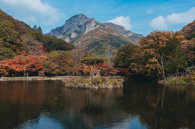 Bellissimo riflesso di alberi su un lago con un'alta montagna e un cielo azzurro sullo sfondo