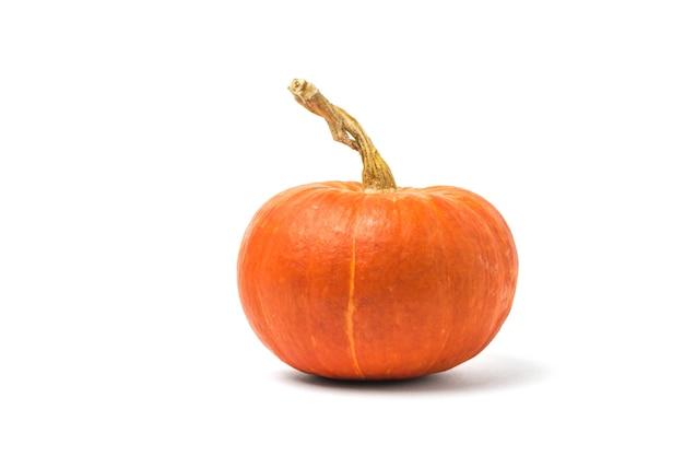 Beautiful ripe pumpkin isolated on white surface