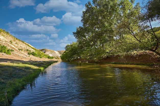 緑と木々がたくさんあり、水に美しい反射がある美しい川